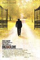 Постер к фильму «Большая злая любовь»