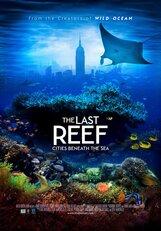 Постер к фильму «Последний риф 3D»