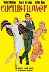 Постер к фильму «Цветок кактуса»