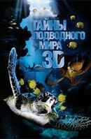 Постер к фильму «Тайны подводного мира 3D»