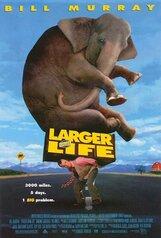 Постер к фильму «Больше, чем жизнь»
