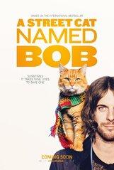 Постер к фильму «Уличный кот по кличке Боб»