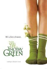 Постер к фильму «Странная жизнь Тимоти Грина»