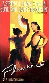 Постер к фильму «Фламенко»