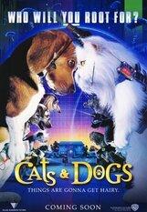 Постер к фильму «Кошки против собак»