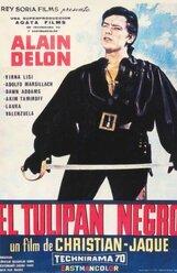 Постер к фильму «Черный тюльпан»