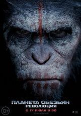 Постер к фильму «Планета обезьян: Революция»