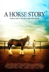 Постер к фильму «История одной лошадки»
