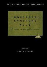 Постер к фильму «Индустриальная симфония №1: Сон девушки с разбитым сердцем»