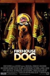 Постер к фильму «Пожарный пес»