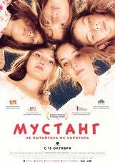 Постер к фильму «Мустанг»