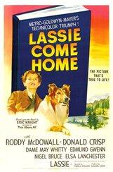 Постер к фильму «Лесси возвращается домой»
