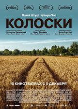 Постер к фильму «Колоски»