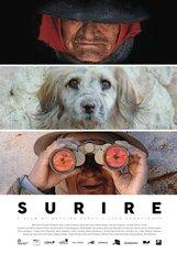 Постер к фильму «Сурире»