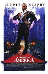 Постер к фильму «Поездка в Америку»
