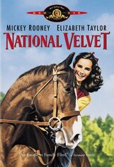Постер к фильму «Национальный бархат»