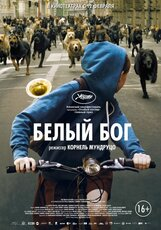 Постер к фильму «Белый бог»