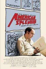 Постер к фильму «Американское великолепие»