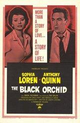 Постер к фильму «Черная орхидея»