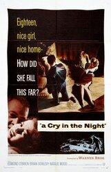 Постер к фильму «Крик в ночи»