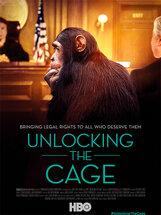 Постер к фильму «Открывая клетку»