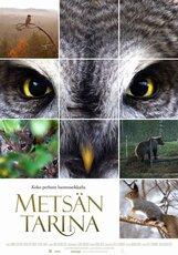 Постер к фильму «Чудесный лес»