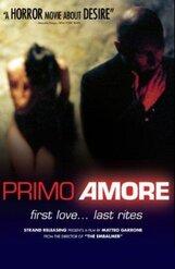 Постер к фильму «Первая любовь»