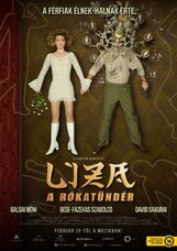 Постер к фильму «Лиза-лиса»