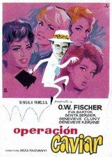Постер к фильму «Агент поневоле»