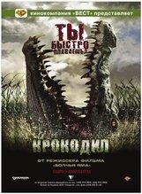 Постер к фильму «Крокодил»