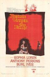 Постер к фильму «Любовь под вязами»