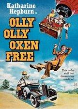 Постер к фильму «Вышел зайчик полетать»