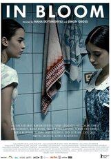 Постер к фильму «Длинные светлые дни»