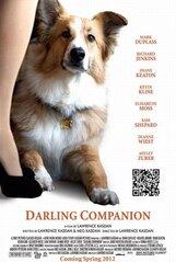 Постер к фильму «Дорогой компаньон»