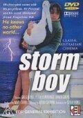 Постер к фильму «Мальчик и океан»