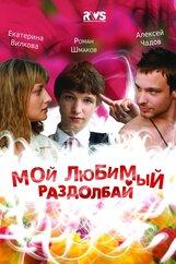 Постер к фильму «Мой любимый раздолбай»