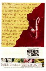 Постер к фильму «Великолепие в траве»