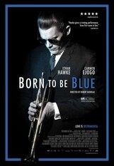 Постер к фильму «Рожденный для грусти»