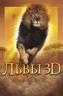 Постер к фильму «Львы 3D»