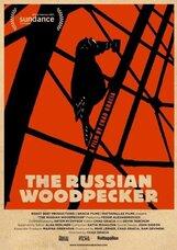 Постер к фильму «Русский дятел»
