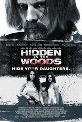 Постер к фильму «Спрятанный в лесу»