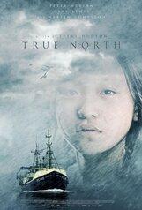Постер к фильму «Нереальный Север»