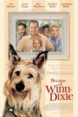 Постер к фильму «Благодаря Винн Дикси»