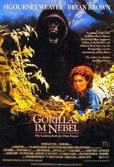 Постер к фильму «Гориллы в тумане»