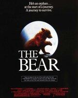 Постер к фильму «Медведь»