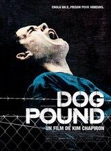 Постер к фильму «Загон для собак»