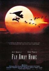 Постер к фильму «Летите домой»