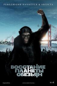 Постер к фильму «Восстание планеты обезьян»