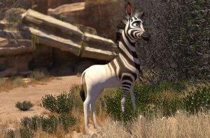 кадры и фото из фильма Король сафари 3D