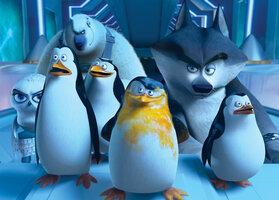 кадры и фото из фильма Пингвины Мадагаскара IMAX 3D